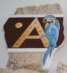 Ptičja abeceda